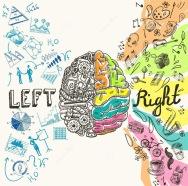 bosquejo-de-los-hemisferios-del-cerebro-44536474